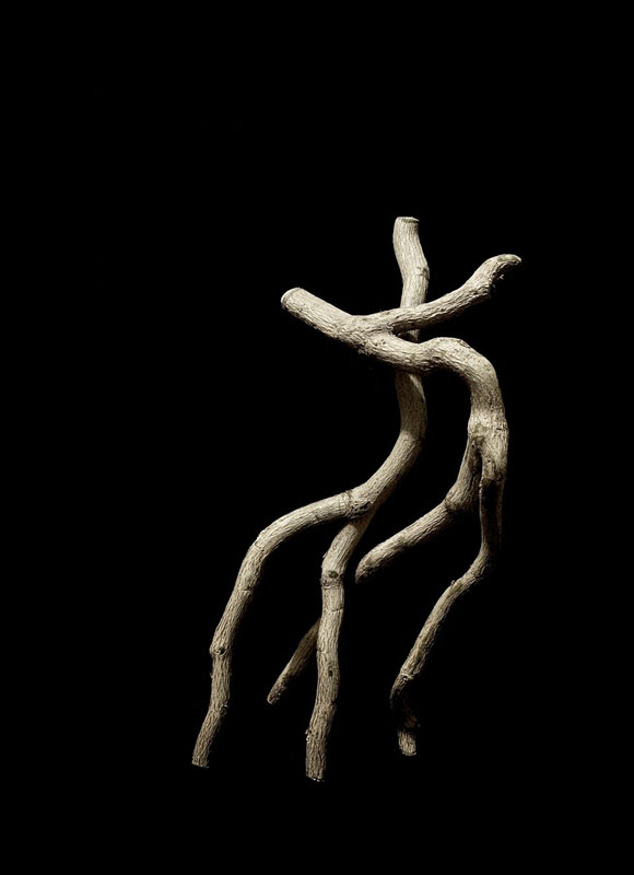 The Dancers by Gene McKinnon
