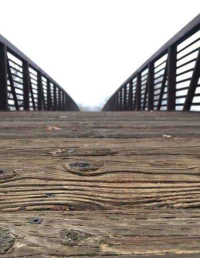 Bridge to the Horizon by Paige Rogin